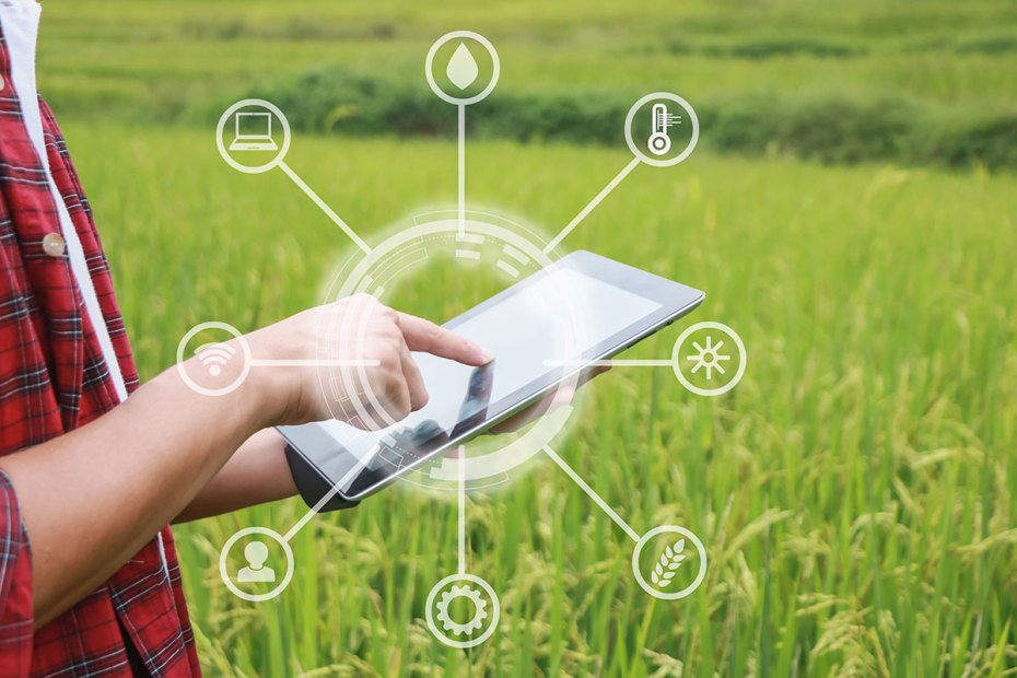 A farmer touching a tablet device with a green field in the background.