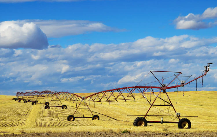 Large farming structure in field