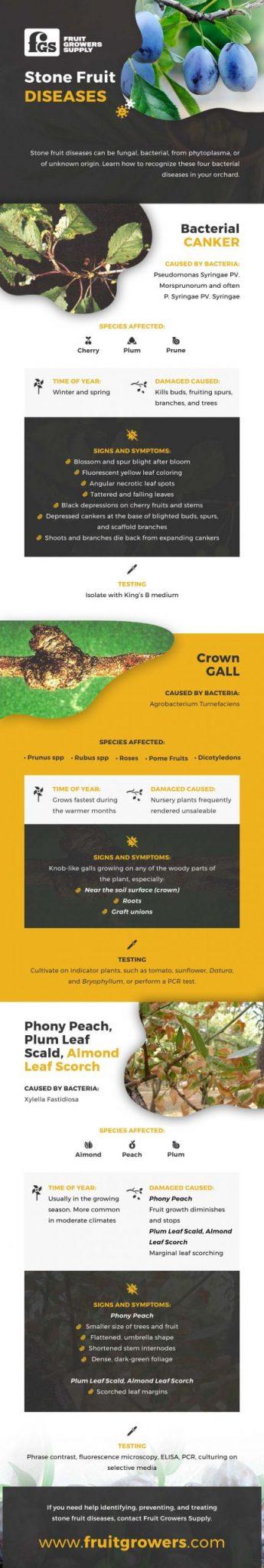 Stone Fruit Diseases Infographic - FruitGrowers