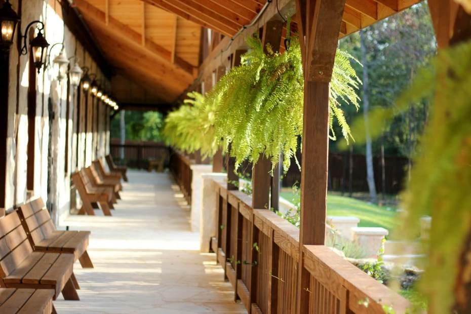 Wooden bench seats on a porch with ferns in the daytime
