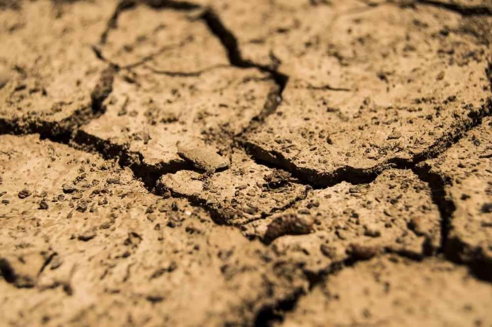 Split dry ground.