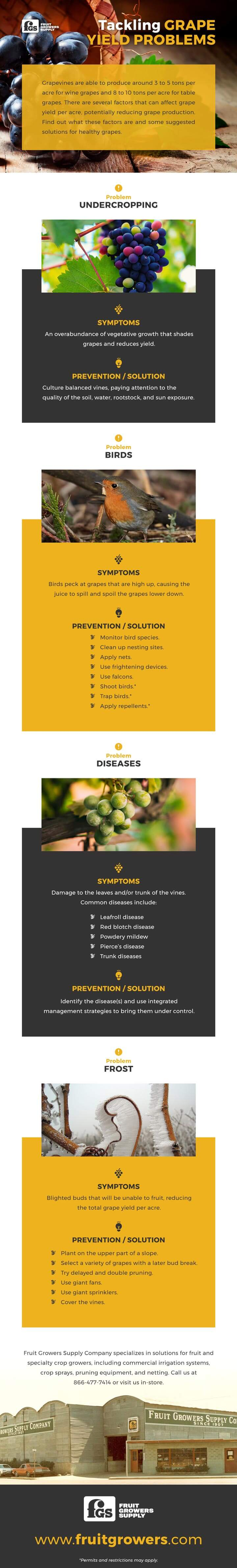 Tackling Grape Yield Problems FruitGrowers - Infographic