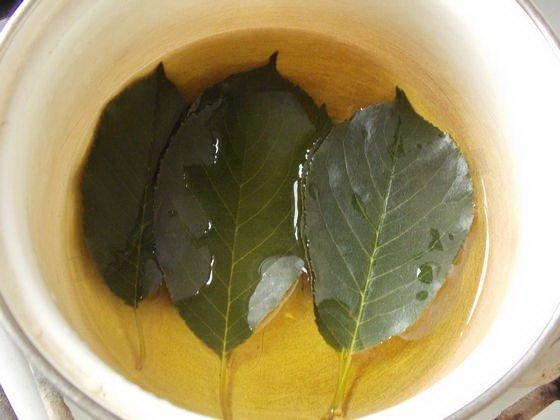 Отвар из листьев черешни
