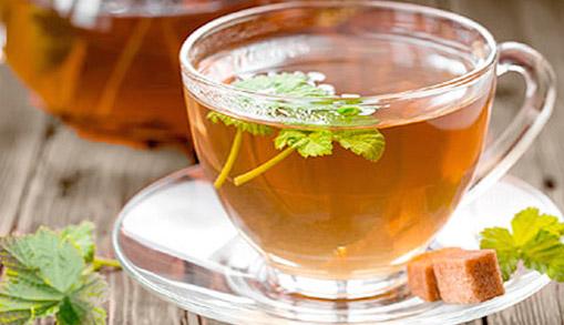 Чай из листьев крыжовника