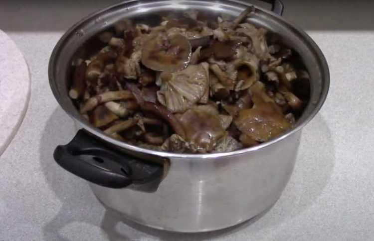 Варить грибы для заморозки