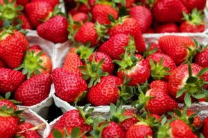 Strawberry Fruit Facts