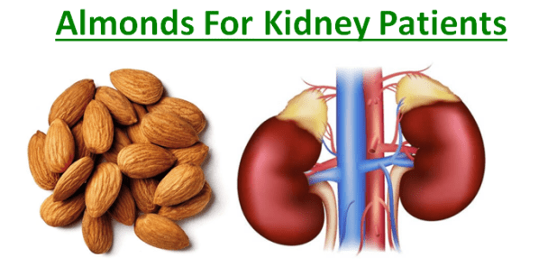 Almonds For Kidney Patients