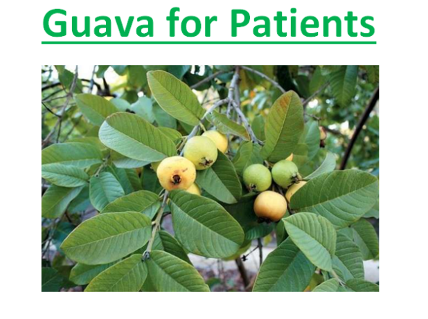 Guava for Patients