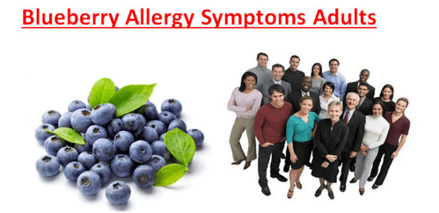 Blueberry Allergy Symptoms Adults
