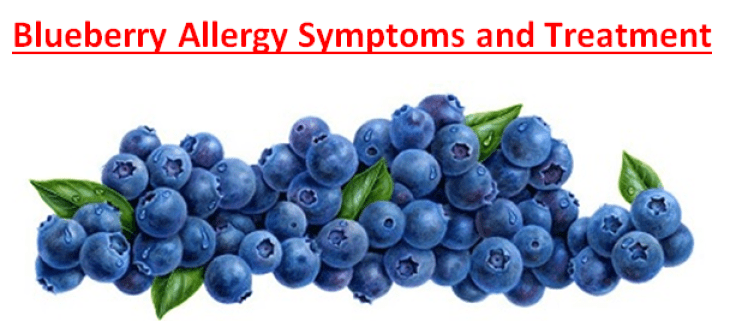Blueberry Allergy Symptoms and Treatment