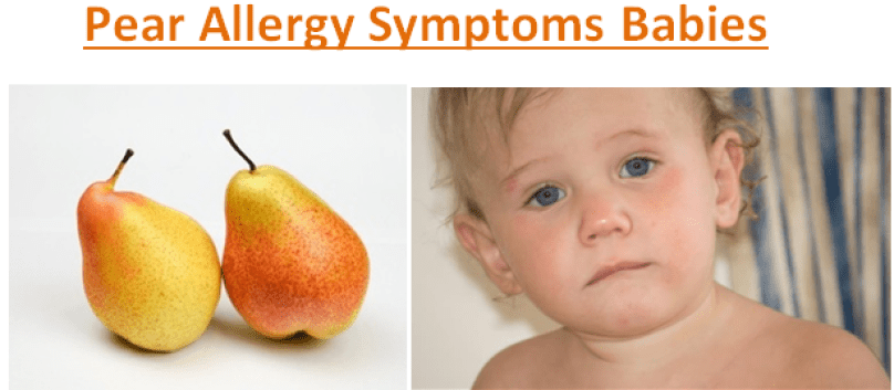 Pear Allergy Symptoms Babies