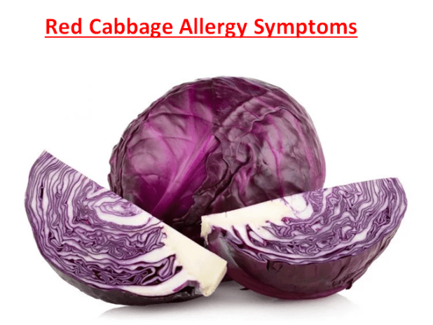 Red Cabbage Allergy Symptoms