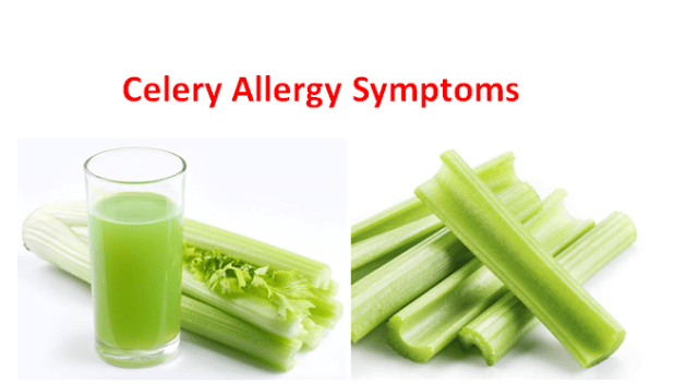 Celery Allergy Symptoms, Are you allergic to celery