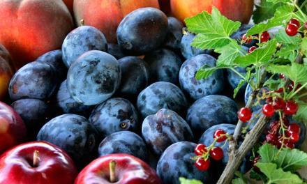 Veszélyben a finom magyar gyümölcs?