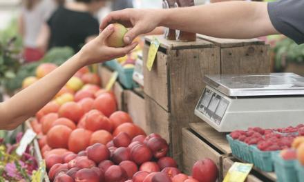 Nyilvános konzultáció az élelmiszer-ellátási lánc fejlesztéséről