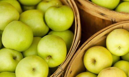 Még mindig nagyon magas Európa friss alma raktárkészlete