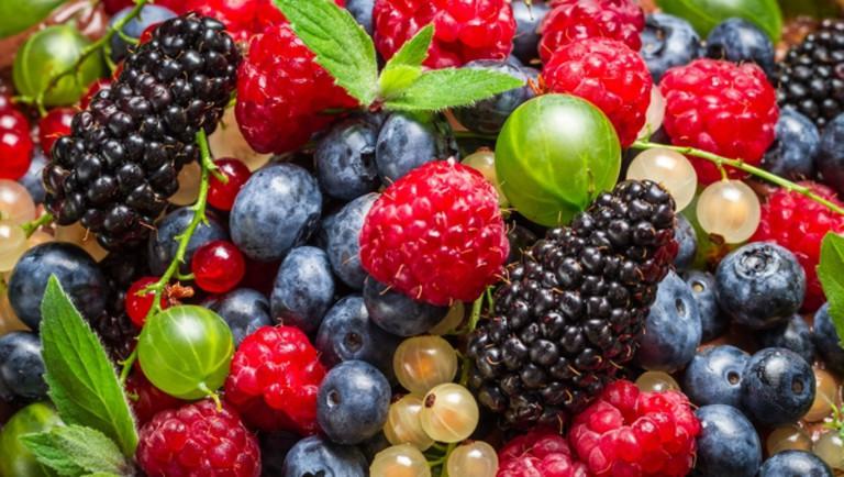 Szükséghelyzeti felhasználási engedély hajtatott ökológiai termesztésű alma, cseresznye, meggy, kajszi, szilva és bogyósgyümölcs kultúrákban