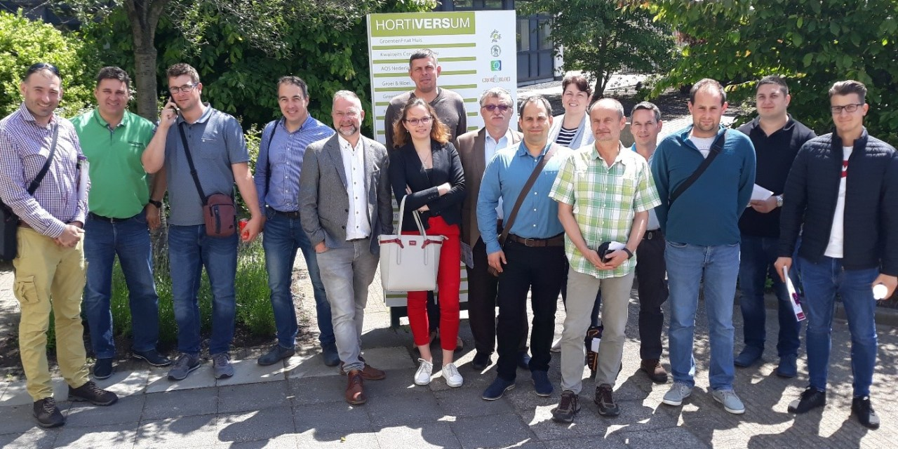 Beszámoló – Hollandiai szakmai tanulmányút zöldséghajtató kertészeknek, III. rész