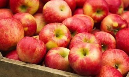 Nincs árnyomás az alma hazai piacán