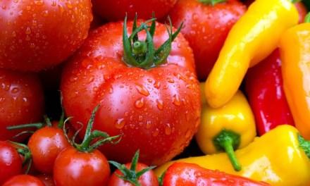 A zöldségágazat helyzetértékelése a 2019. év január-augusztus időszak történései alapján