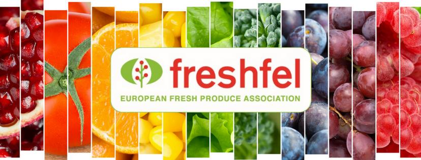 Freshfel: Nemzetközi zöldség-gyümölcs szakmaközi kollégiumot alakít az INTERFEL, a HORTIESPAÑA, az ORTOFRUTTA ITALIA a BO G&F NEDERLAND