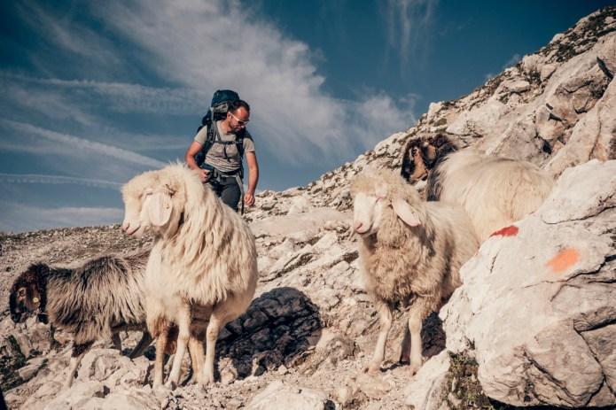 Zugspitze Tour AUG 2014-16