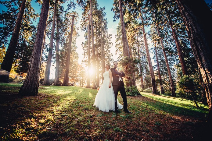 weddingportraitsnov92385212031528