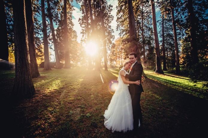 weddingportraitsnov92385212031530