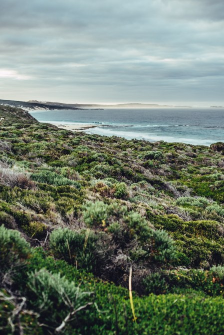 Margaret River Oktober 2018_small-392