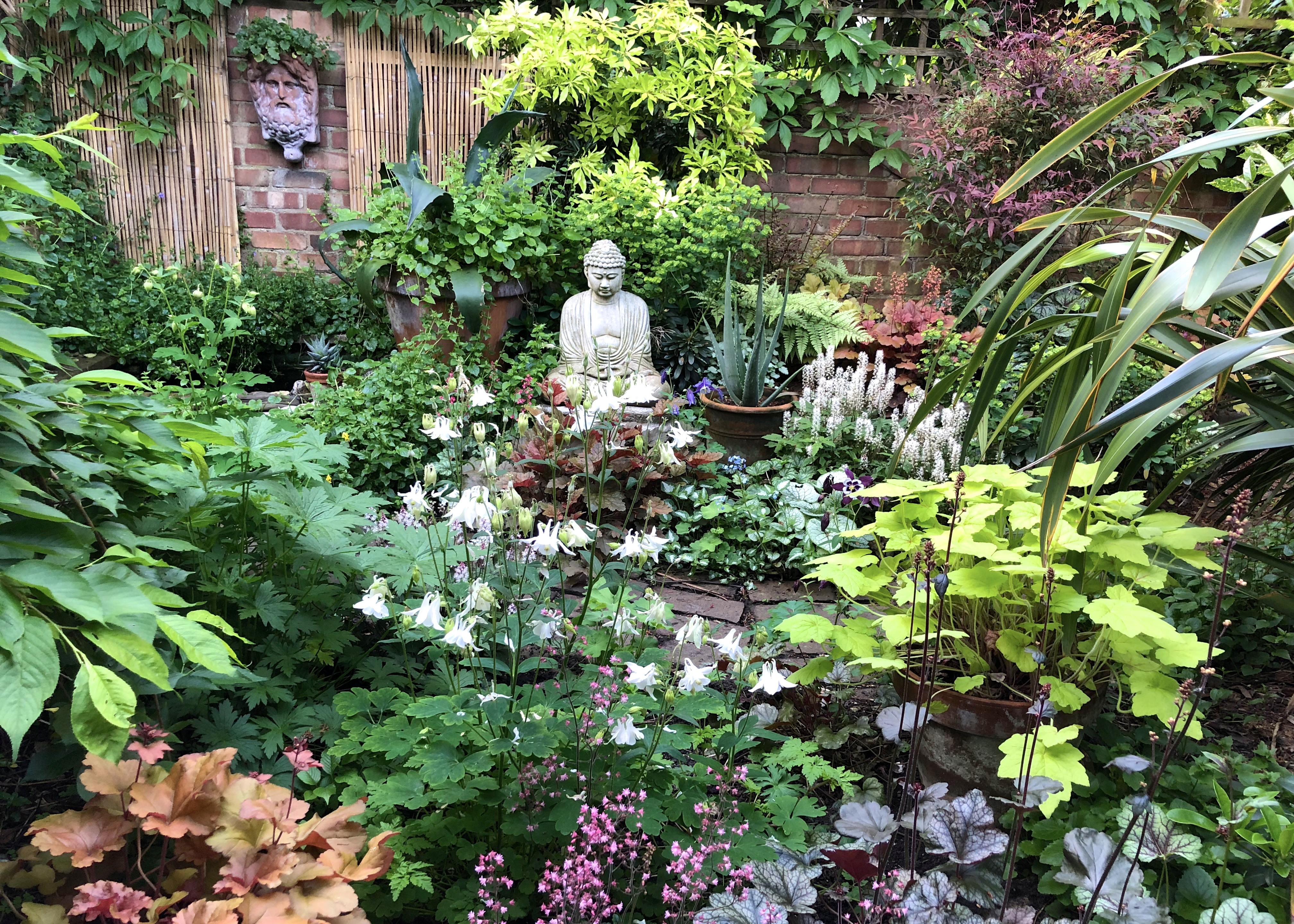 Ten Top Tips for Small, Shady Urban Gardens - The ... on Small Urban Patio Ideas id=13098