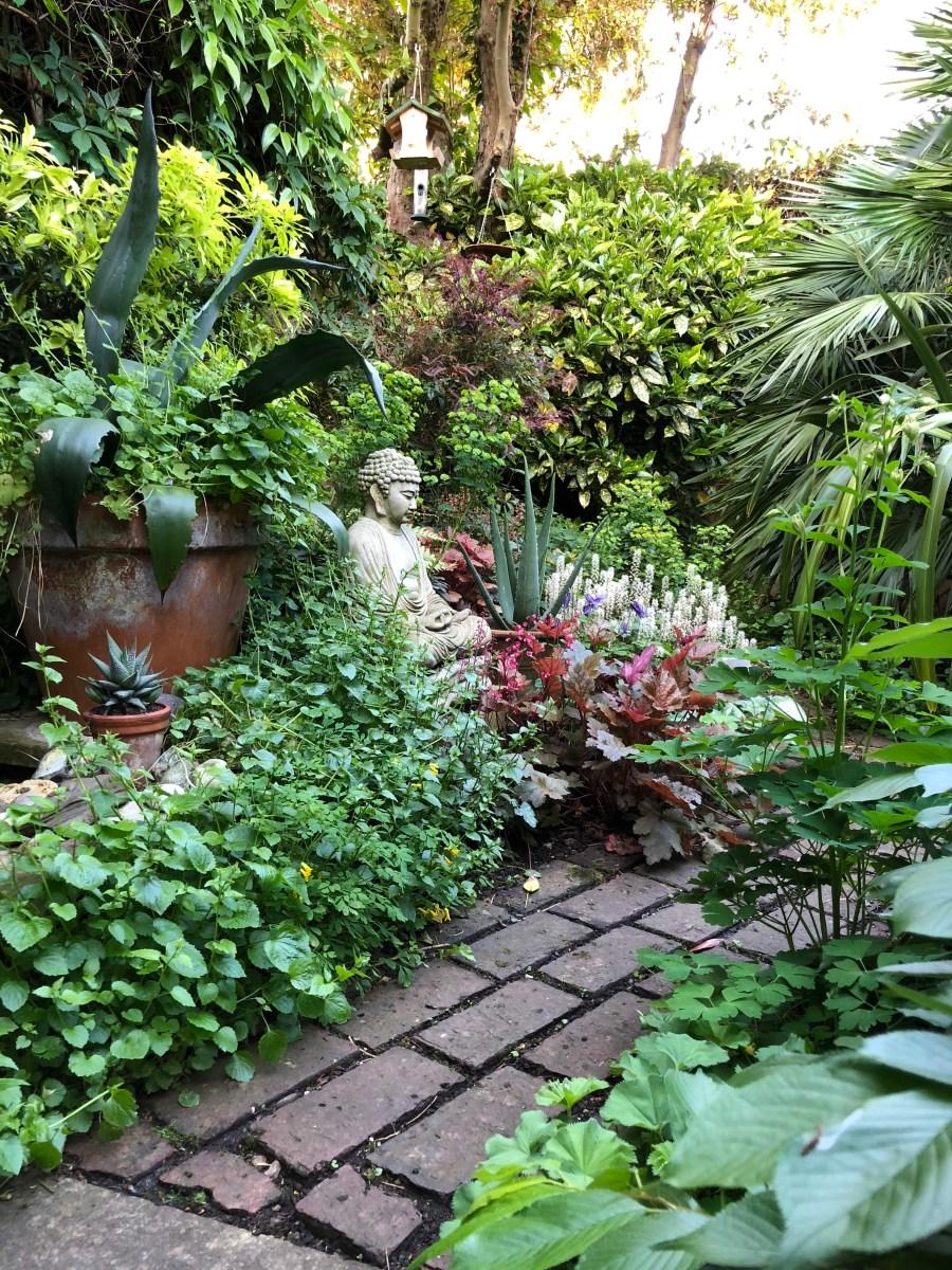 Ten Top Tips for Small, Shady Urban Gardens - The ... on Shady Yard Ideas  id=80300
