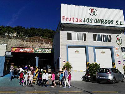 Escolares aprendiendo sobre las frutas subtropicales en Frutas Los Cursos