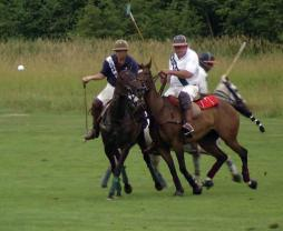 american polo games