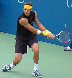 Juan Martín del Potro at the 2009 US Open