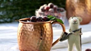 Spiced Cranberry Mule