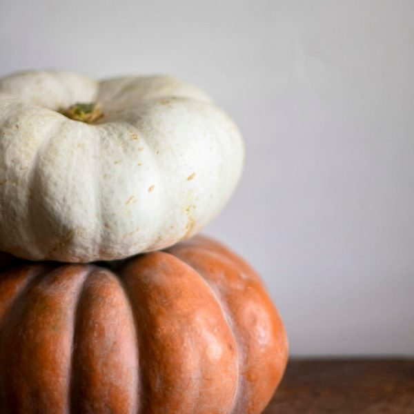 white pumpkin on orange pumpkin