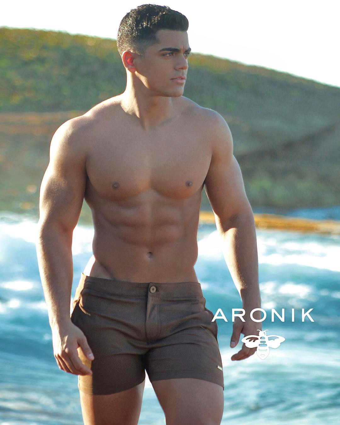 New Aronik 2017 by Edwin Lebron