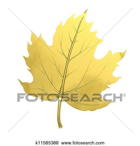 Golden maple leaf Stock Illustration | k11585388 | Fotosearch