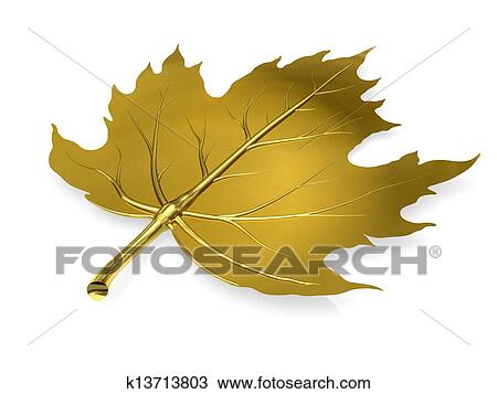 Golden maple leaf on white background Drawing | k13713803 | Fotosearch