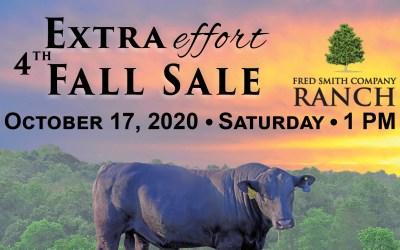 2020 Fall Sale Catalog
