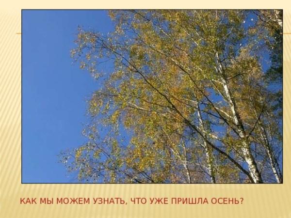 "Презентация на тему ""Осень"""