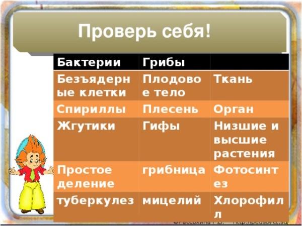 Общая характеристика Царства Растений. ФГОС 5 класс ...