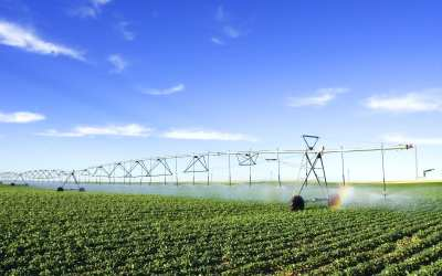Farmers Reap the Benefits of Connected Technology in the Field