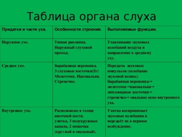Анализаторы (презентация)