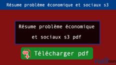 Résume problème économique et sociaux s3 pdf
