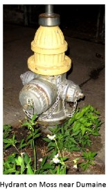 dumaine-fire-hydrant1-2016july1