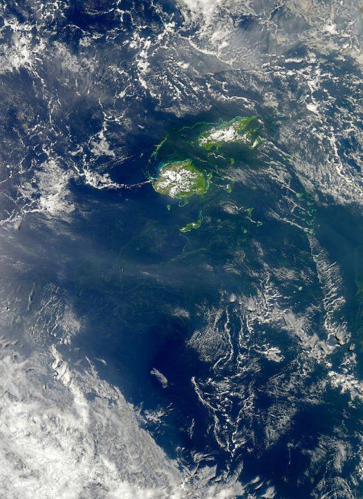 Cyanobakterien Fidschi