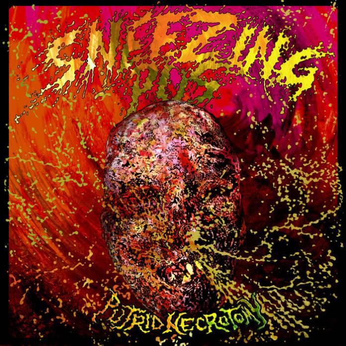Sneezing Pus / Vomi Noir Split Bandcamp