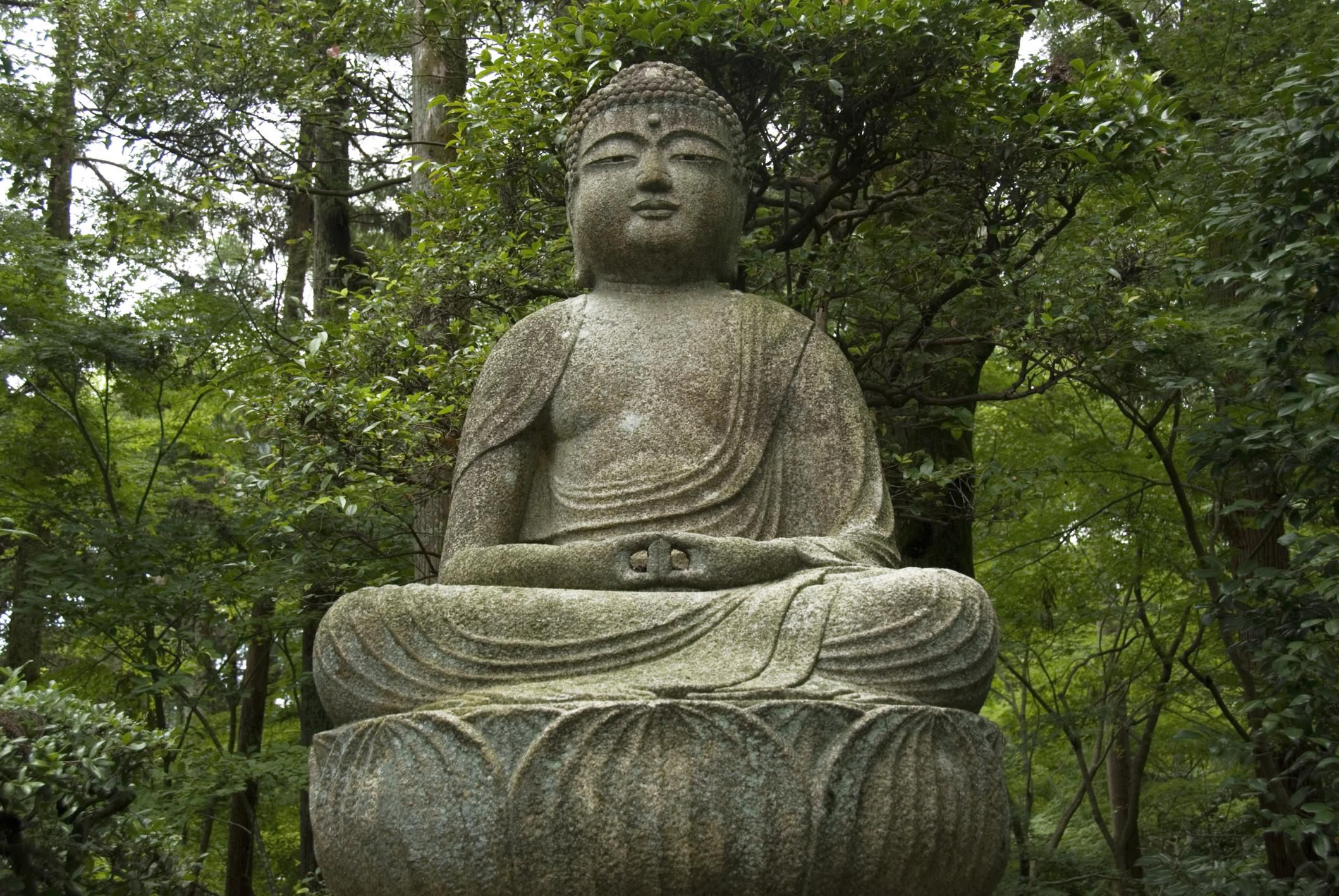 Buddhist Teachings On Reincarnation Or Rebirth