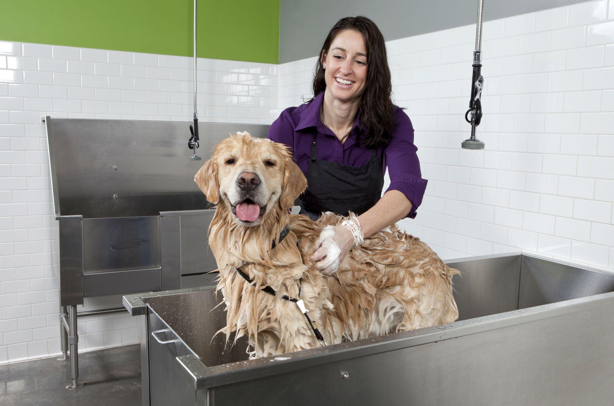 U Bathe Em Dog Wash